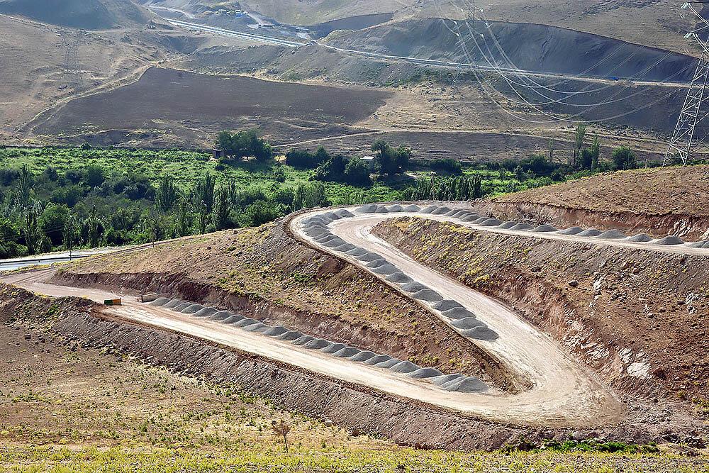 طغیان بیسابقه آفات در جنگلهای دستکاشت مناطق بیابانی ایران