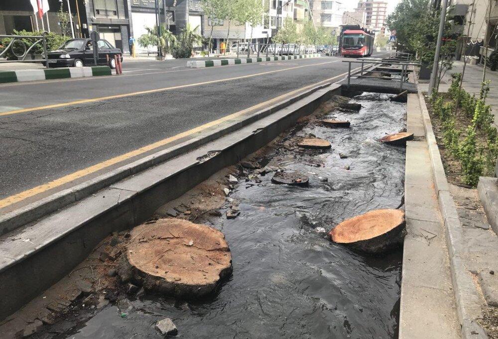 مجازات تخریب فضای سبز شهری چیست؟