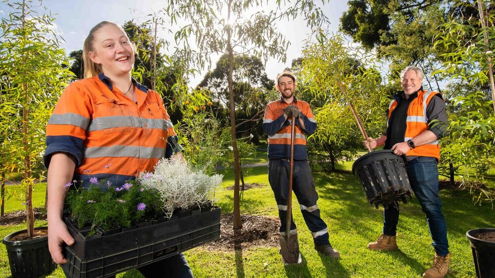 افزایش کاشت درخت در اتریش برای زیباسازی شهرها