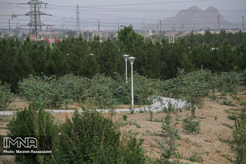آغاز عملیات احداث چهار هزار و۵۰۰ متر مربع  فضای سبز در سنندج