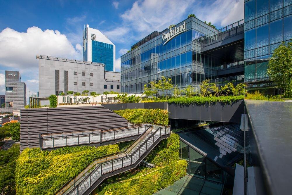 احداث بزرگترین بام سبز جهان در هلند