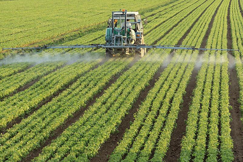 چگونگی افزایش بهرهوری در بخش کشاورزی/ جایگاه ایران کجاست؟