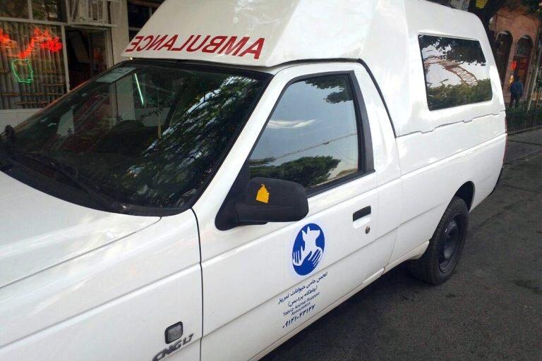 فعالیت آمبولانس ویژه جمعآوری حیوانات بی پناه آغاز به کار کرد