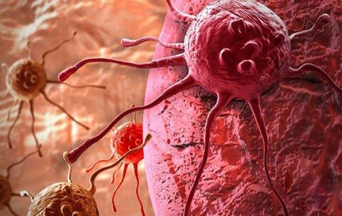 سرطان زا بودن تریاک تائید شد/برخورد با پزشکانی که تریاک تجویز میکنند