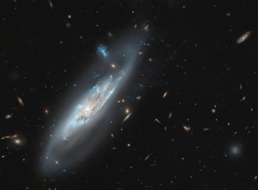 از کهکشان NGC 4848 چه میدانید؟