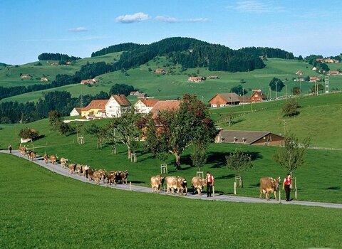 روستاهای دانمارک میزبان مسافران اروپای شرقی