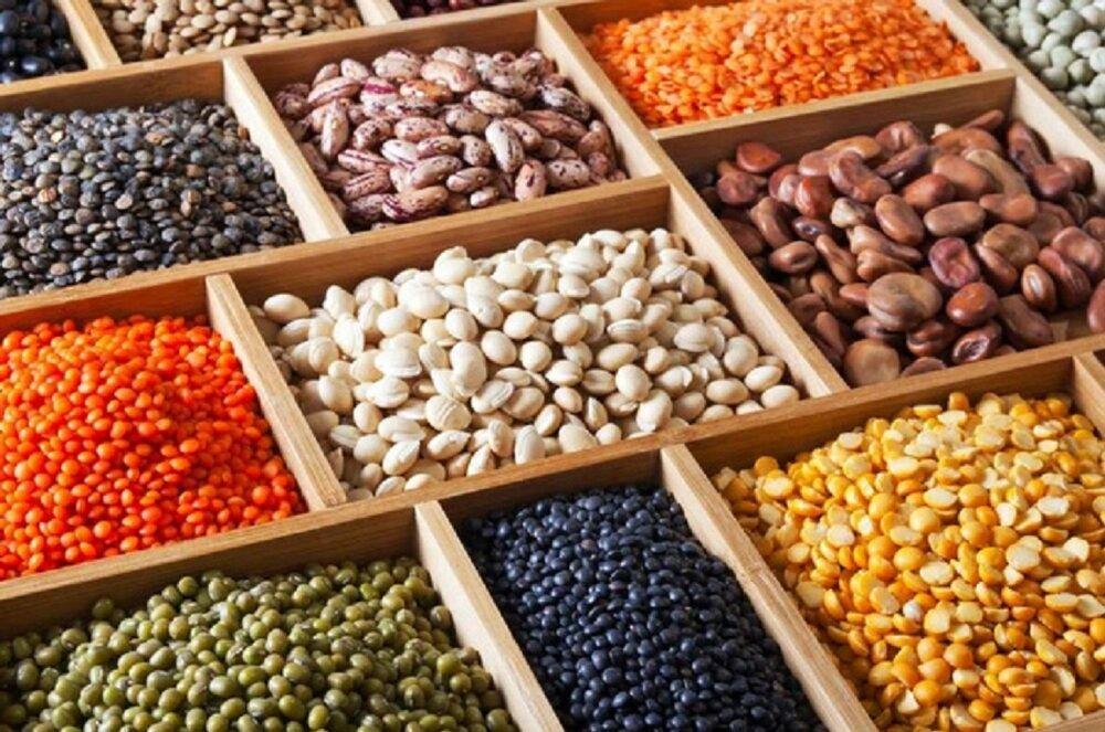 خواص لوبیا چیتی برای لاغری/ رژیم غذایی مفید برای بهبود میگرن