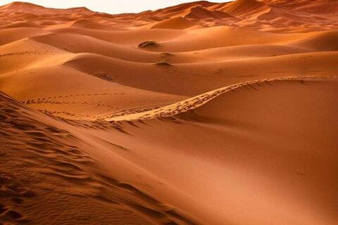 گرد و غبار صحرایی علائم آلرژی را بدتر میکند
