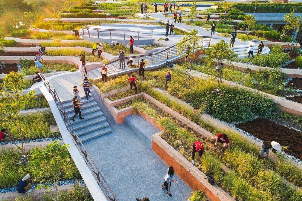 بزرگترین بام باغ آسیا بر فراز یک دانشگاه