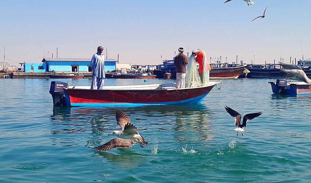 اطلاعیه وزارت اطلاعات درباره صیادان آزاد شده از دست دزدان دریایی