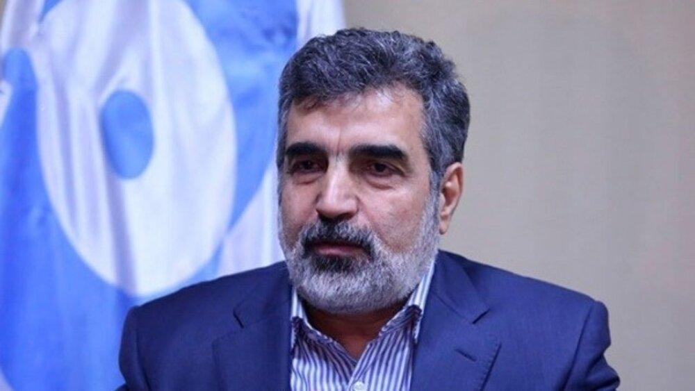 شرط ایران برای امکان دسترسی آژانس از زبان کمالوندی