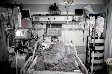 آمار کرونا کرمان ۸ مرداد؛ ۲۸ فوتی و ۱۸۵ ابتلای جدید