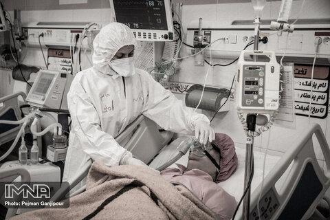 آخرین آمار مبتلایان و فوتیهای کرونا در کرمان در ۱۹ مهر