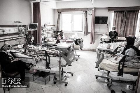 آخرین آمار مبتلایان کرونا در مازندران در هشتم مهرماه