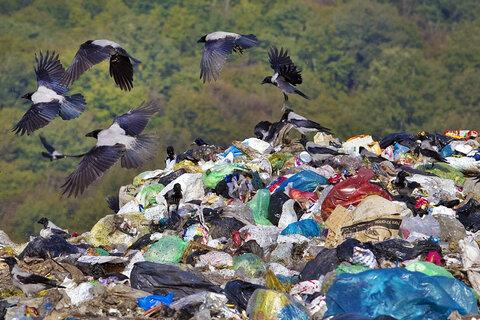 احداث لندفیل بهداشتی زباله در سایت دفن زباله شهرداری قائمشهر