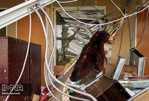 پس از عبور طوفان لورا از دریاچه چارلز ، لوئیزیانا یک خرس تاکسیدرمی در میان آوار داخل ساختمان آسیب دیده ایستاده است
