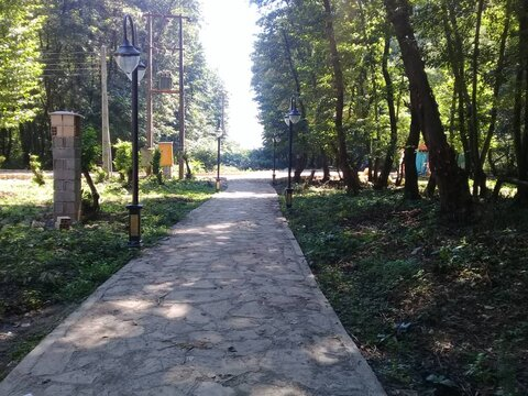 """آغاز بهرهبرداری از پارک جنگلی """"کفود"""" شاندرمن"""
