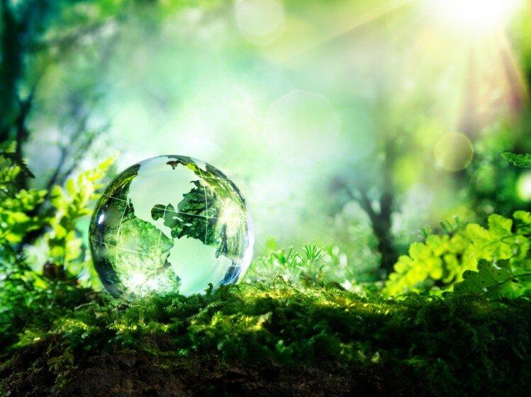دنیای سبزتر و پایدارتر پس از کرونا
