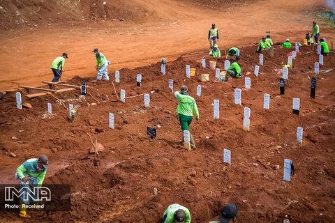 محل دفن قربانیان ویروس کرونا در جاکارتا، اندونزی