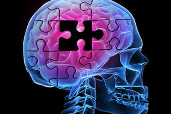 رژیم غذایی موثر برای کاهش ابتلا به آلزایمر چیست؟