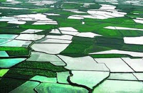 ساخت و بهرهبرداری بیش از ۵ هزار هکتار واحد تولیدی در شهرکهای کشاورزی