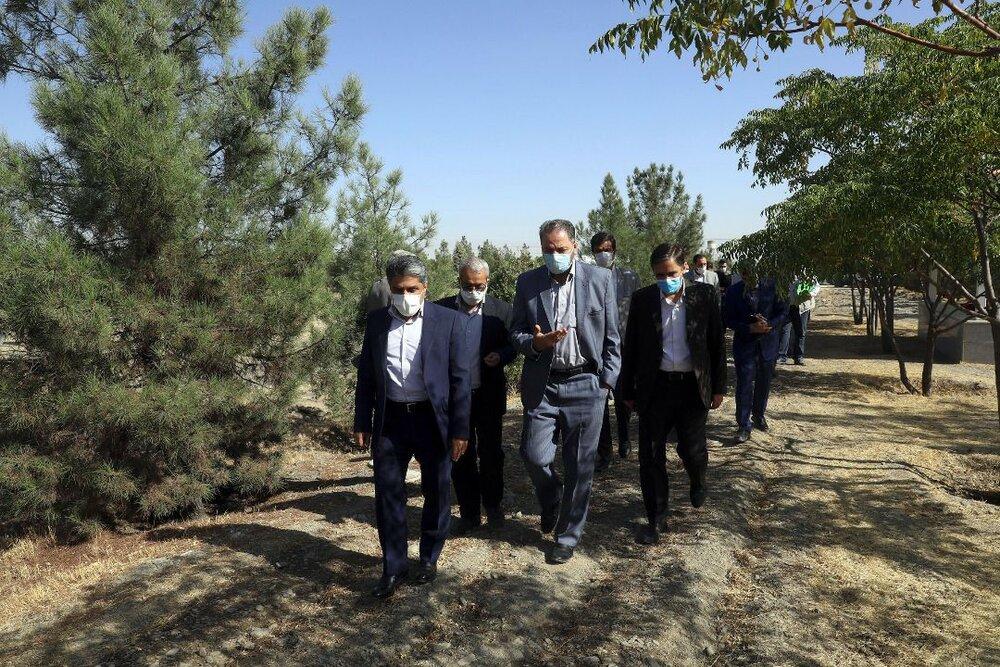 انتخاب گونههای کاشته شده در کمربند سبز جنوبی مشهد با تأیید متخصصان