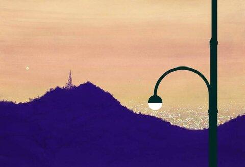 نصب ۳۰۰ چراغ دکوراتیو در معابر آمل