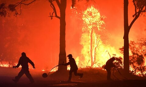 More than 7000 hectares of protected areas burnt in bushfires