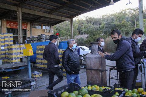 میدان میوه و ترهبار و بازارهای کوثر فردا فعال است