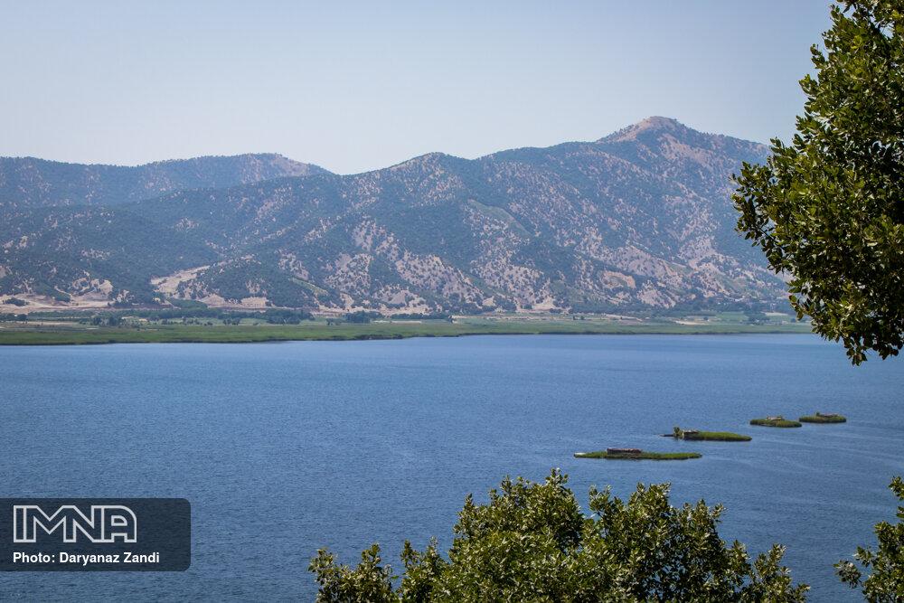 ماجرای «تمساح دریاچه چیتگر» به کجا رسید؟