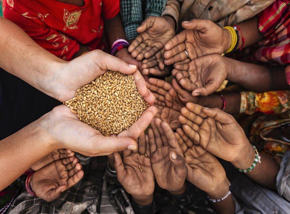 امنیت غذایی جهان در عصر کرونا
