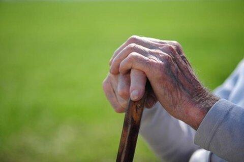 سالمندان پرتحرک سالمتر هستند
