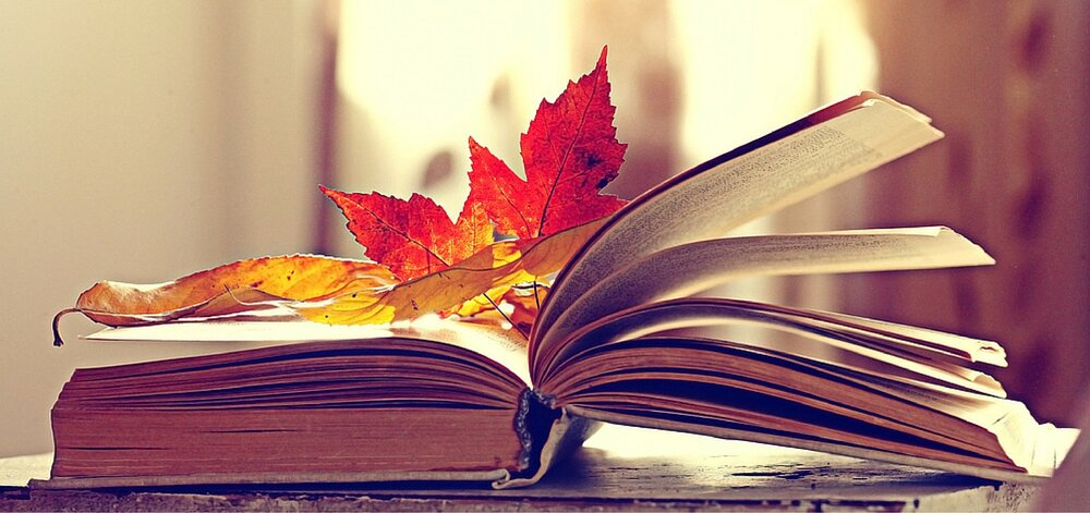 ۲۴ آبان، روز کتاب و کتابخوانی ۹۹ + پیام تبریک، پیشینه و فواید کتاب
