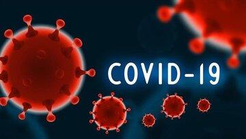 کرونا ویروس  نسبت به دما حساس است/ افزایش شیوع بیماری در کشورهای سردسیر