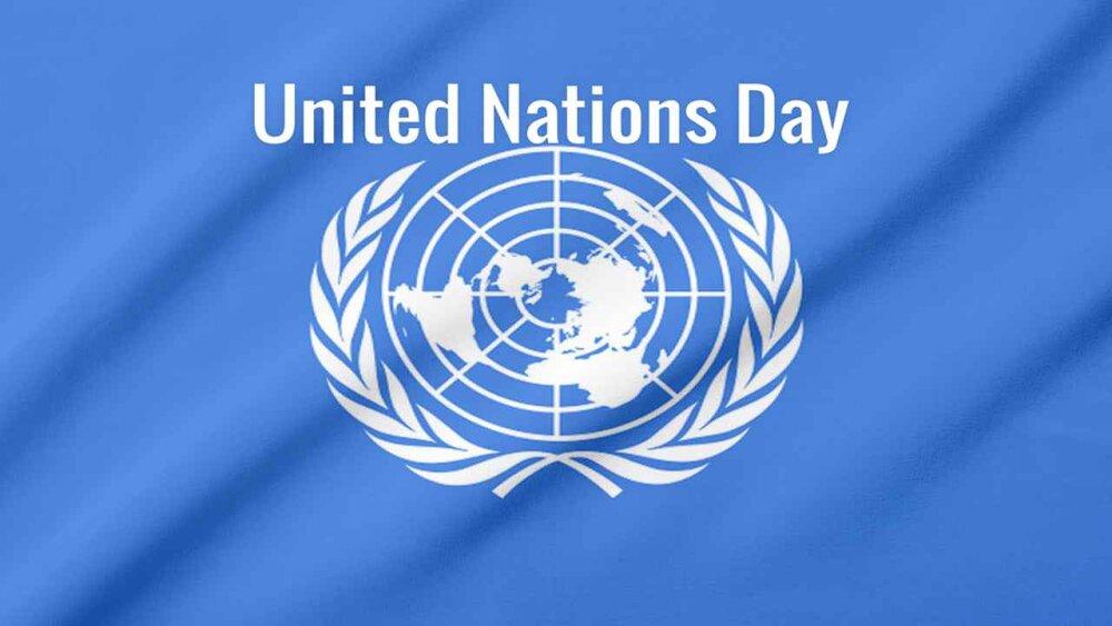 سازمان ملل در دفاع از حقوق زنان قربانی ترور مطالبهگری کند