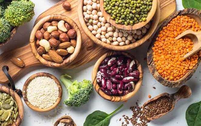 فواید پروتئین برای بدن کدامند؟
