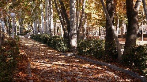 ایجاد ۷۲ معبر پاییزی در بوستانهای منتخب سطح شهر مشهد