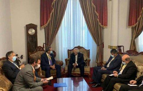 ظریف با وزیر امور خارجه شیلی دیدار کرد