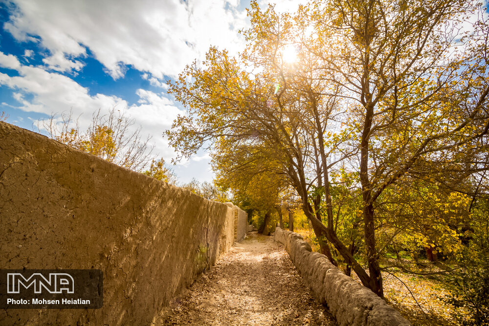 Unique fall foliage pathway in Isfahan