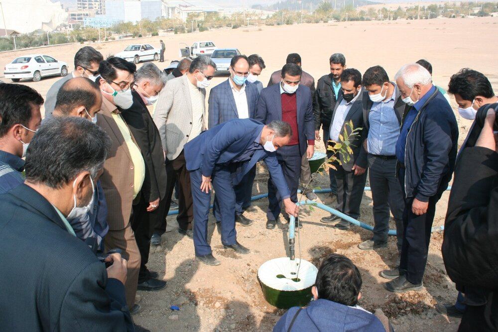 ۵۰ هکتار دیمکاری در کمربند شرق اصفهان