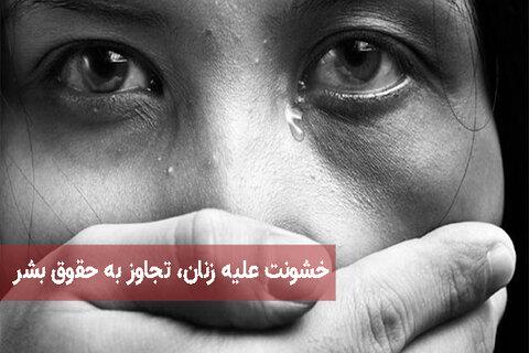 خشونت علیه زنان، تجاوز به حقوق بشر