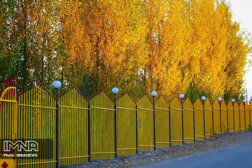 شهرداری تنها دستگاه مسئول تامین امنیت پارکها نیست