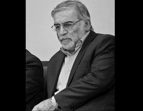 محسن فخري زاده دانشمند هسته اي كه ترور شد كه بود؟ + عكس