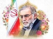 نامگذاری فرهنگسرای بروجرد به نام «شهید محسن فخریزاده»