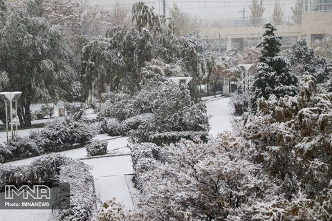 Tabriz cloaked in snow