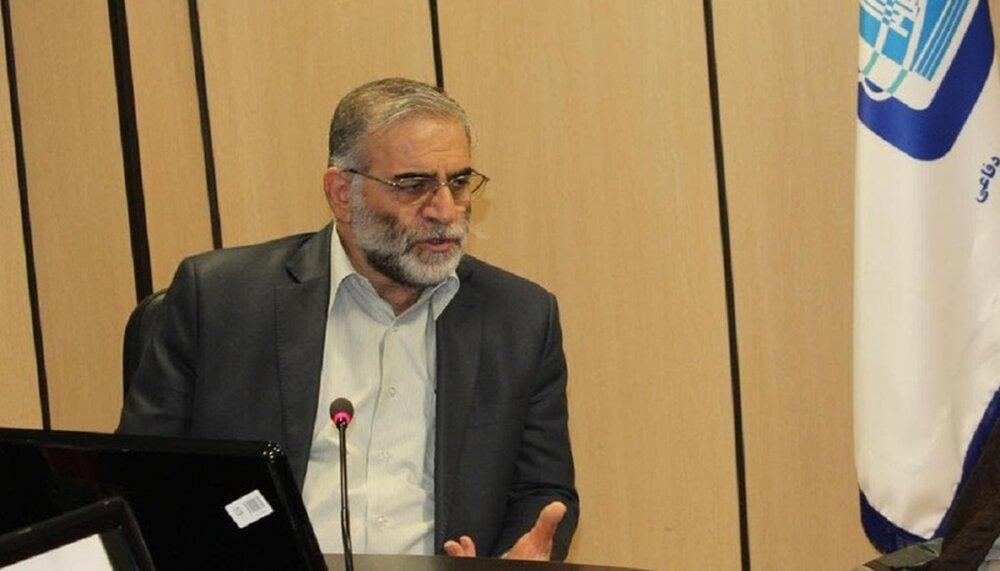 محسن فخری زاده در مذاکرات هسته ای نقش داشت؟