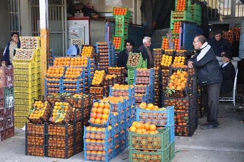 قیمت میوه و تره بار در بازار امروز ۷ مرداد+ جدول