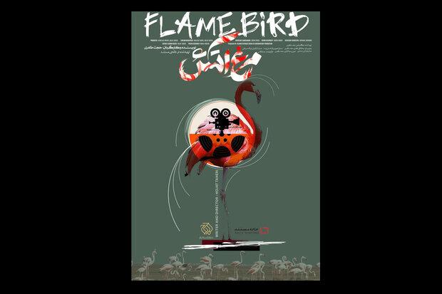 رونمایی از پوستر مستند مرغ آتش