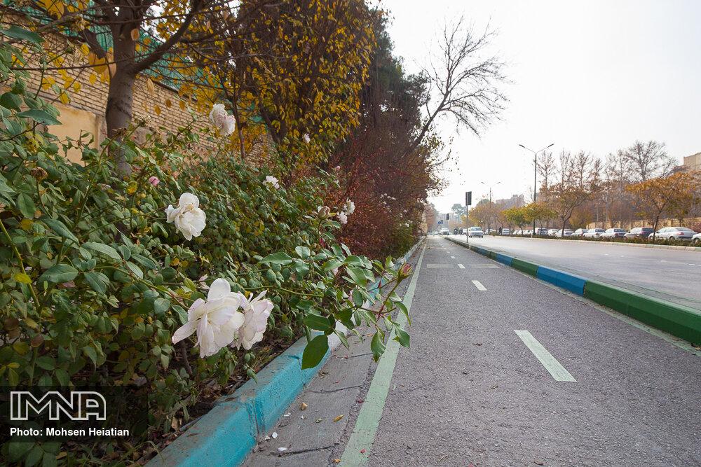 تعمیر مسیرهای دوچرخه قزوین