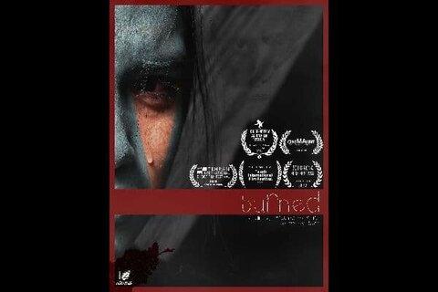 داغی ایرانی از رومانی جایزه گرفت